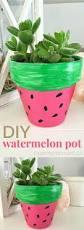 best 25 watermelon flower ideas on pinterest watermelon party
