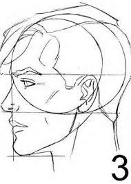 drawn profile male face pencil and in color drawn profile male face