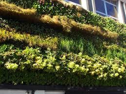 diy wall garden ultimate home ideas