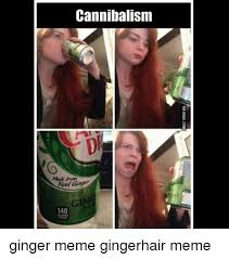 Ginger Meme - 25 best memes about ginger meme ginger memes