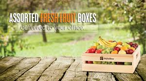 fruit delivery service the fruit box calgary s premier office fruit delivery service