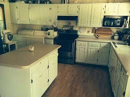 what colour should i paint my kitchen cabinets hometalk