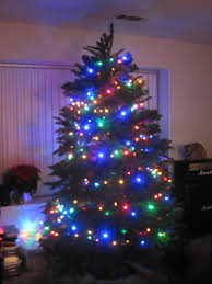 led lights for tree with light trees happy holidays