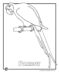 17 rainforest animals coloring pages coloring pages of rainforest