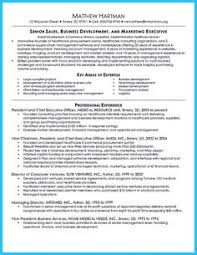 Best Words For A Resume by Computer Programmer Resume Has Some Paragraphs That Focuses On The