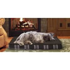 home depot black friday pet beds memory foam dog beds shop the best deals for oct 2017