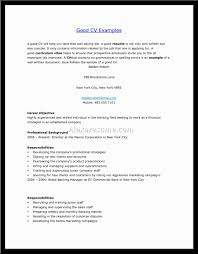 Good Resume Layout Example by Resume Template How To Make A Look Good Professional Email