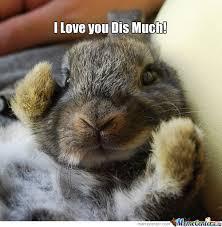 Cute I Love You Meme - i love you dis much meme boomsbeat
