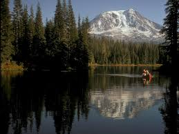 Washington forest images Region 6 regional overview jpg
