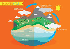water cycle diagram vector download free vector art stock