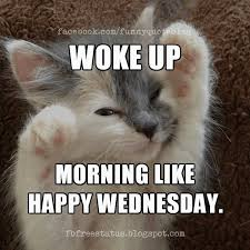Funny Memes About Wednesday - funny wednesday meme images pictures and photos