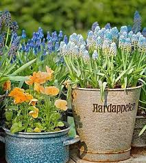enjoy container gardening