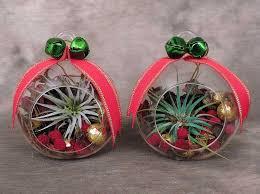 tillandsia glass ornament kremp