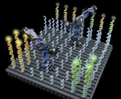a cargo sorting dna robot science