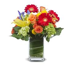 florist gainesville fl with me in gainesville fl floral expressions florist