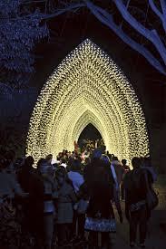 Royal Botanical Gardens Restaurant by Vivid Sydney At The Royal Botanic Garden 2016 Sydney