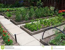 fall raised bed vegetable gardening for beginners garden design