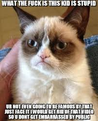 What The Fuck Is This Meme - what the fuck is this kid is stupid grumpy cat meme on memegen
