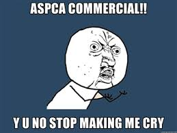 Aspca Meme - why u no aspca aspca commercial parodies know your meme