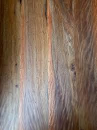 rainbow eucalyptus heritage salvage