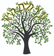 tree of life temple sinai tree of life etz chaim u2014 temple sinai