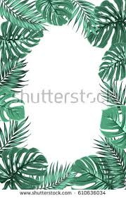 tree border stock images royalty free images vectors