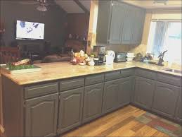 kitchen creative kitchen cabinet painting cost wonderful