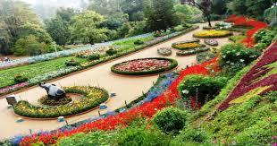 Rock Garden Chd 2 Days Chandigarh City Sightseeing Tour Package Chandigarh Local