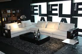 White Sofas In Living Rooms Living Room Amazing Designs Of Sofas For Living Room Sofa