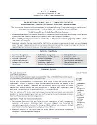 Sample Cv Resume Format Professional Resume Examples By Gayle Howard Top Margin Executive Cvs