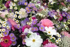 flower subscription jug of seasonal flowers by post organic blooms