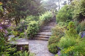 Botanical Gardens Seattle Elisabeth C Miller Botanical Garden Land Morphology