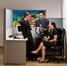 cubicle decorating best home interior and architecture design