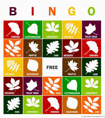 Halloween Bingo Free Printable Cards by Relentlessly Fun Deceptively Educational Fall Leaves Bingo