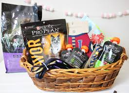 pet gift baskets dog and pet gift giving caring for your senior pet deux