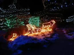 Christmas Lights Colorado Springs More Light Exhibits Picture Of Cheyenne Mountain Zoo Colorado