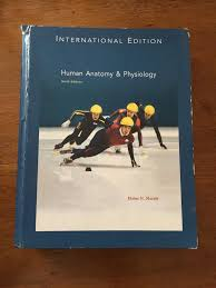 Human Anatomy And Physiology 9th Edition Marieb And Hoehn Fundamental Of Anatomy And Physiology 9th Edition Posot Class