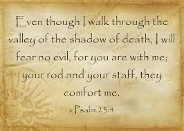 Thy Rod And Thy Staff Comfort Me What Is The Difference Between The Rod And The Staff A Bible Study