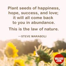 Nature Love Quotes by Plant Seeds Of Happiness Hope Success And Love It Will All