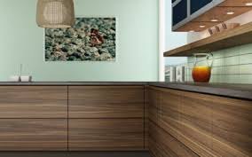 wood grain kitchen cabinet doors modern dendra doors