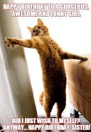 Funny Cat Birthday Meme - happy bday cat funny memes pictures instagram