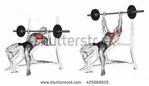 Incline Dumbell Bench Press Bench Press Stock Images Royalty Free Images U0026 Vectors Shutterstock