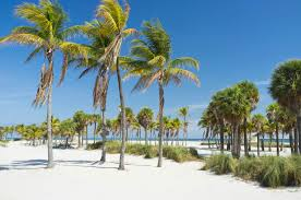 choice hotels in florida book your florida hotel today