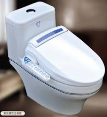 Bidet Sink Bidet Toilet Combo Toilet And Bidet Combo Jaiainc Us Bathroom