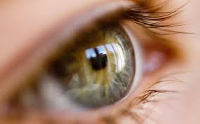 What Is Congenital Blindness Cure For Cataracts Scientists Use Stem Cells To Grow U0027living Lens