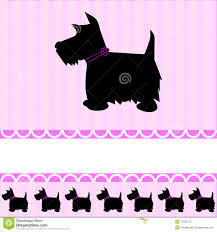 scottish terrier card stock vector image of puppy 12900370