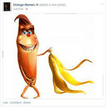 Orange Memes - 25 best memes about orange memes orange memes