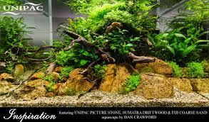 Aquascape Inspiration Home Aquatic Substrates Aquatic Decor Aquarium Materials