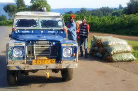 the treloar herald mbeya to karonga 162km with 1 u0027130m ascent