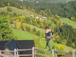guesthouse planinski dom majerhold solčava slovenia booking com